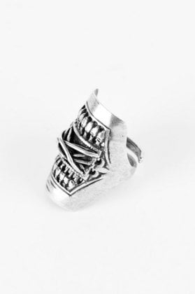 DANNIJO Cheyenne Filgree Column Ring in Silver :: tobi